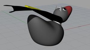 Rubber Ducky 4